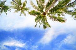 Cielo sulla spiaggia Immagini Stock Libere da Diritti