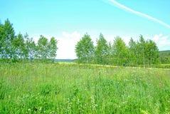 Cielo tempestoso di estate in rurale Immagine Stock Libera da Diritti