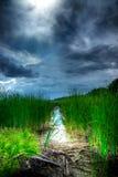 Cielo tempestuoso sobre humedales iluminados Fotos de archivo