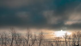 Cielo triste e drammatico sopra le cime d'albero Alba durante il tempo scuro Video di lasso di tempo stock footage