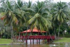 Cielo tropical Fotografía de archivo libre de regalías