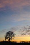 Cielo variopinto dal tramonto Fotografie Stock Libere da Diritti