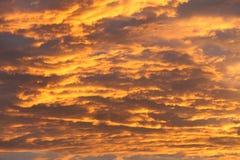 Cielo variopinto molto intenso con lo strato della nuvola alla sera prima del tramonto fotografia stock