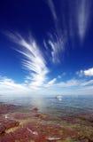 Cielo Wispy della baia di Hallett immagine stock
