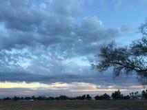 Cielo y árbol Foto de archivo libre de regalías