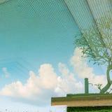 Cielo y árbol de la reflexión en piscina Foto de archivo libre de regalías