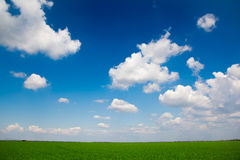 Cielo y campo Imágenes de archivo libres de regalías