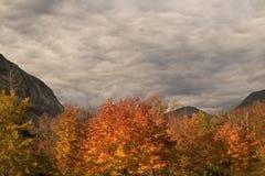 Cielo y hojas de otoño tempestuosos en la muesca de Franconia Fotografía de archivo libre de regalías