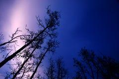 Cielo y luces norteñas Fotos de archivo libres de regalías