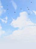 Cielo y pájaros Imagenes de archivo