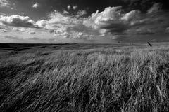 Cielo y tierra Fotografía de archivo libre de regalías
