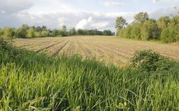 Cielo y Washington Farm Acreage Foto de archivo libre de regalías