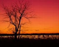 Cielos ardientes Foto de archivo libre de regalías