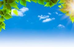 Cielos azules. Imagen de archivo