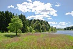 Cielos azules en el lago Imagen de archivo