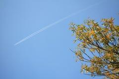 Cielos azules y aviones fotos de archivo