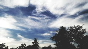 Cielos de la tarde Fotografía de archivo libre de regalías