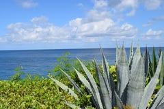 Cielos del Caribe Foto de archivo libre de regalías