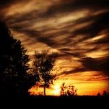Cielos del otoño Foto de archivo libre de regalías
