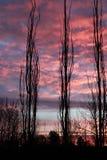 Cielos en el fuego fotos de archivo