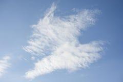 Cielos nublados durante el día Fotos de archivo libres de regalías