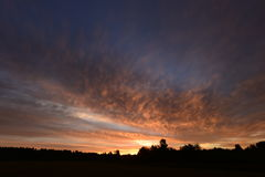 Cielos nublados teniendo en cuenta amanecer sobre el bosque Imágenes de archivo libres de regalías
