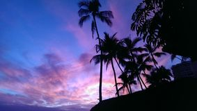 Cielos púrpuras fotos de archivo