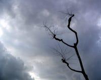 Cielos tempestuosos Foto de archivo libre de regalías