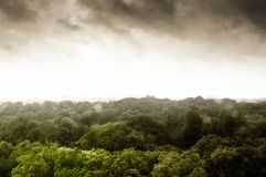 Ciemna burza nad małym lasem obraz stock