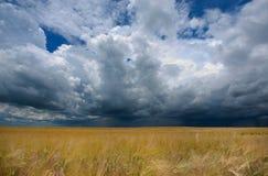 ciemna chmury burza Obraz Royalty Free