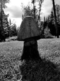Ciemna drewniana pieczarka Zdjęcia Royalty Free