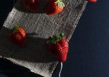 Ciemna karmowa truskawka zdjęcie stock