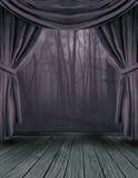 ciemna lasowa scena Obrazy Stock
