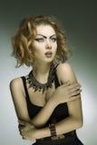 Ciemna mody dama Obraz Stock