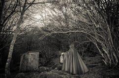 Ciemna obecność w drewnach zdjęcie royalty free