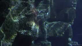 Ciemna podwodna rockowa formacja zbiory