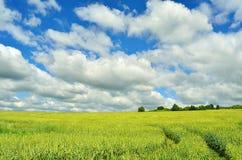 ciemne chmury błękit nieba pola white drogowego Zdjęcia Stock
