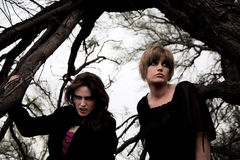 ciemne lasowe kobiety Zdjęcie Stock