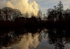 Ciemne sylwetki drzewa i wieczór niebo odbija w jeziorze obraz royalty free