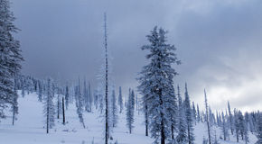 Ciemne zim chmury fotografia stock