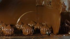 Ciemnego brązu cukierki na konwejerze zbiory wideo