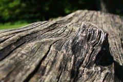 Ciemnego brązu textured naturalny drewniany nawierzchniowy tło Zdjęcia Stock