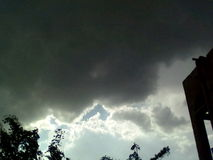 Ciemnego czerni strom obrazy stock