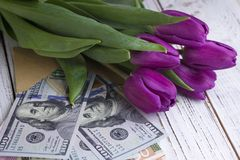 Ciemni lili tulipany i pieniędzy banknotów usa na białym drewnianym tle zdjęcia stock