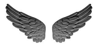 Ciemni tynków skrzydła Obrazy Royalty Free