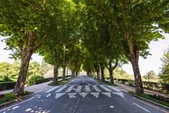 Ciemniutka aleja - Vigo miasto, Galicia, Hiszpania Fotografia Stock