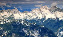 Ciemnozieleni sosnowi lasy i Jalovec, Mangart osiągają szczyt, Juliańscy Alps Obraz Stock