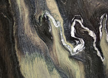 Ciemnozielony marmur jako tło Obrazy Royalty Free