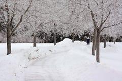 ciemny dzień zima Fotografia Royalty Free