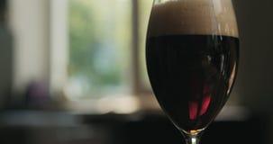 Ciemny lager piwo w szkło backlit zmierzchu światłem Obrazy Stock